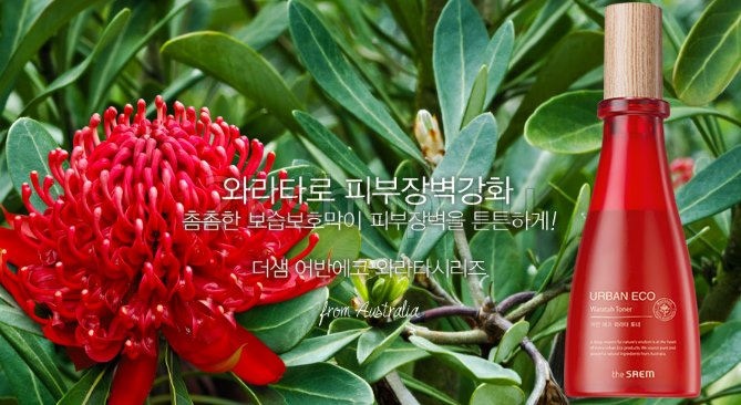 Картинки по запросу the saem urban eco waratah whitening serum